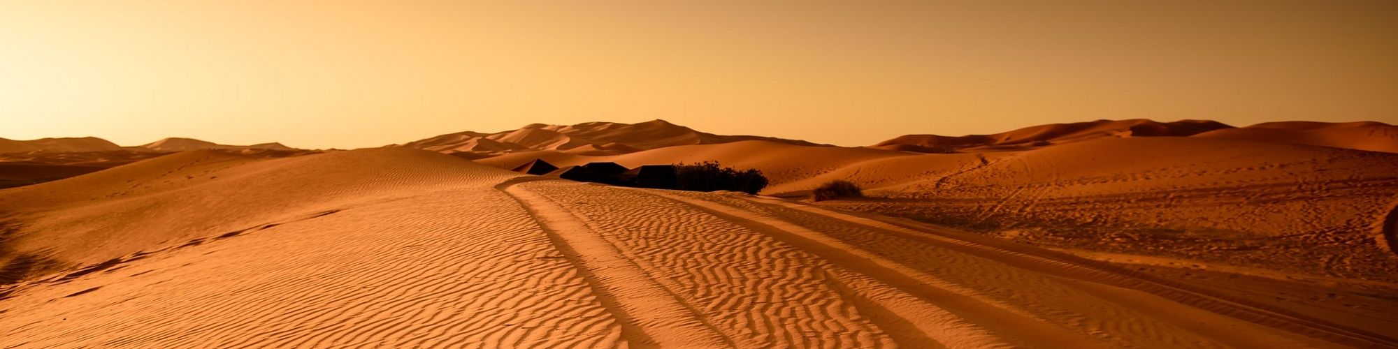Te acompañamos en tu viaje por el desierto.